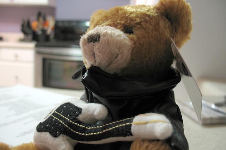 Rock n' Roll Teddy